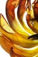 Fototapety KWIATY żółte 9116 mini