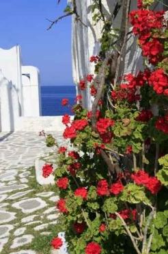 Fototapety GRECJA grecja 9833
