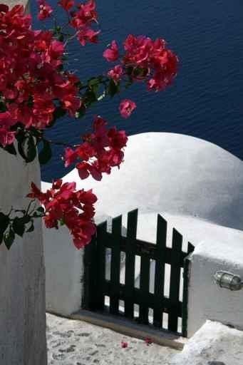 Fototapety GRECJA grecja 9858-big