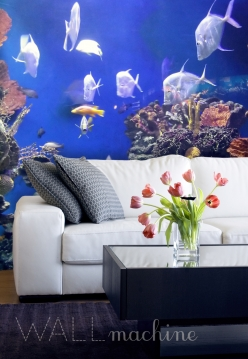 galeria: ZWIERZĘTA życie pod wodą